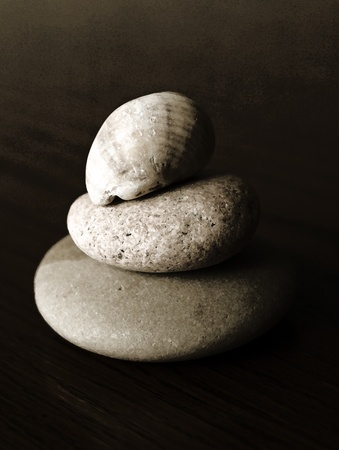 smooth: Worn and weathered rocks and shells from the sea
