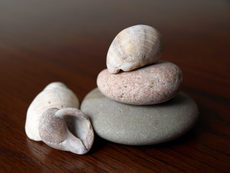 upclose: Worn and weathered rocks and shells from the sea