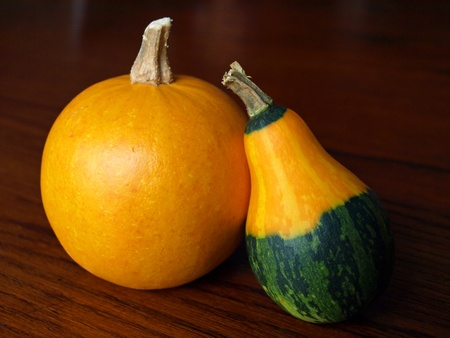 Two decorative squash isolated together