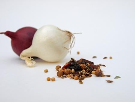 赤と白葱のスパイス 写真素材