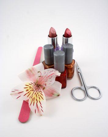 beauty shop: Un Sal�n de belleza bodeg�n