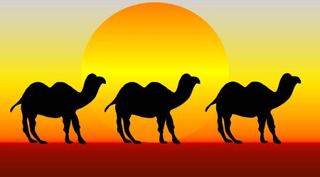 An illustration of three camels crossing the desert at sunset