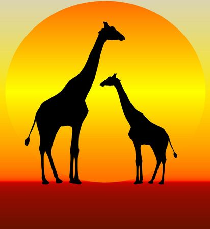 An illustration of two giraffes at sunset illustration