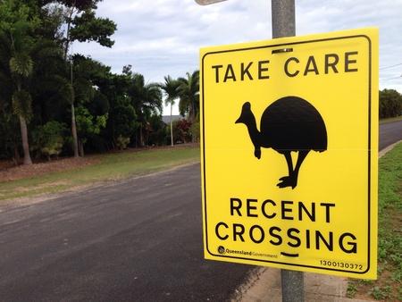 cassowary: Cassowary sign