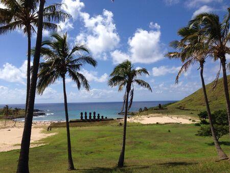 moai: Moai playa de Anakena Rapa Nui Isla de Pascua