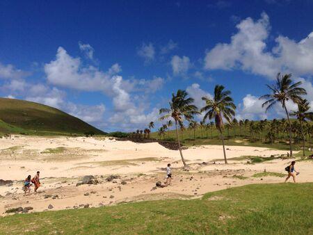 rapa nui: Playa Anakena Moais de Rapa Nui Isla de Pascua Foto de archivo