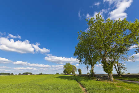 Idyllic rural view of pretty farmland with white fluffy clouds, in the beautiful surroundings of the Cotswolds, England, UK. Stock Photo - 18049295