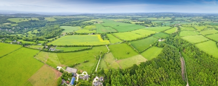 aerial animal: Dramatic aerial view of idyllic rolling patchwork farmland with pretty wooded boundaries, lit in warm early evening sunshine in the heart of the Cotswolds, England, UK.