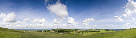 Idyllic rural view of pretty farmland and healthy livestock, in the beautiful surroundings of the Cotswolds, England, UK  photo
