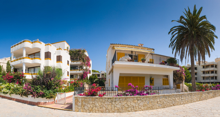 spanish house: Picturesque white villas, colorful flowers and palm tree.
