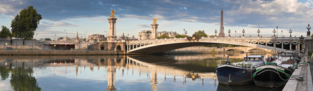champs elysees quarter: Stunning Pont Alexandre III bridge (1896) spanning the river Seine Stock Photo
