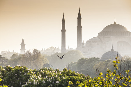 blue mosque: Majestic Blue Mosque (built 1616) in the vibrant city of Istanbul, Turkey. Stock Photo