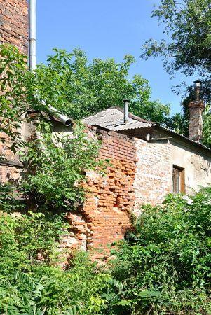 brushwood: The old house is in brushwood Stock Photo