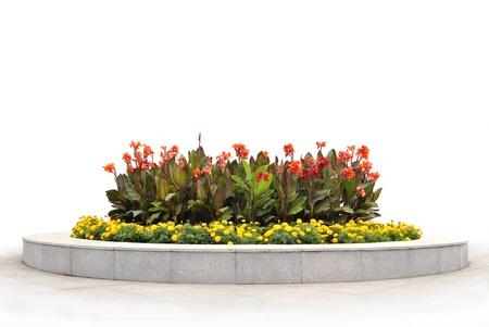 massif de fleurs: La plate-bande de fleurs rouges et jaunes