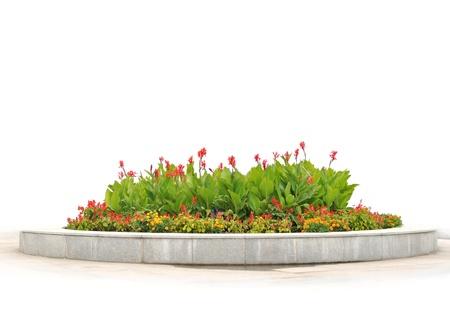 massif de fleurs: Le parterre de fleurs rouges et jaunes