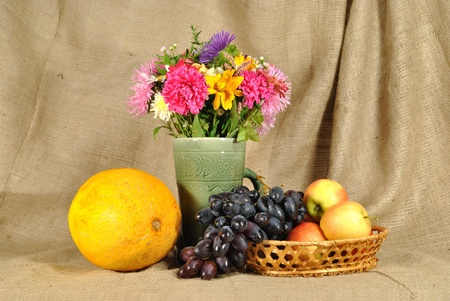 The autumn flowers and fruit photo