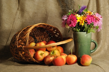 The autumn flowers and red apples Stock Photo - 10563502
