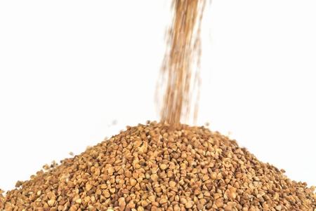 ceda: El rendimiento de trigo sarraceno
