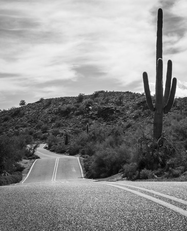 A desert mountain road in Phoenix Arizona photo