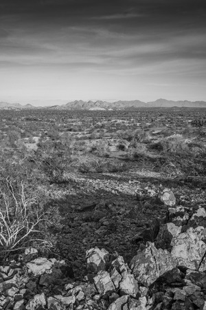 black and white of the pheonix arizona desert landscape Stock Photo