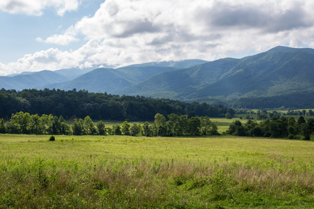 The Great Smoky Mountains in summer around Tennessee 写真素材