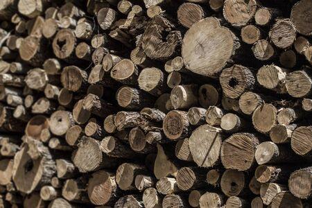 Logging tree stump grain textures deforestation. Stock fotó - 82367488