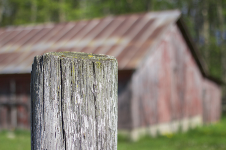 Blurred old red barn in background with white faded fence post in focus. Stock Photo