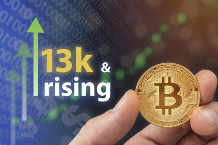 Bitcoin 디지털 회로 전자 개념입니다. 통화 가치 상승과 금융 위기로 인한 수익 증가.
