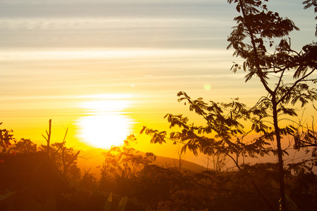 Orange sunset jungle trekking in Asian rainforest.  Wild travel adventure with incredible views. Stock Photo