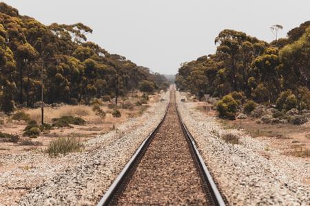 Vintage train tracks.  Journey any direction.