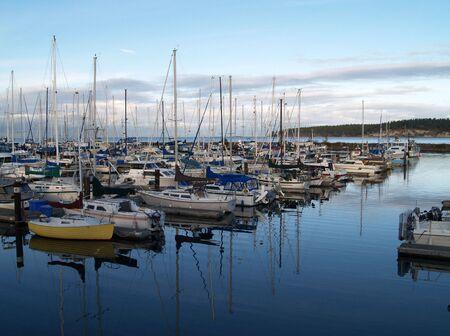 boats sitting in a marina