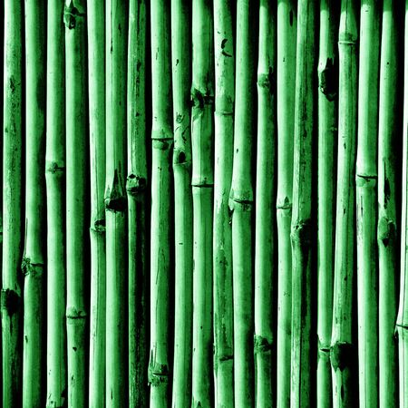 An illustration of a green bamboo texture.