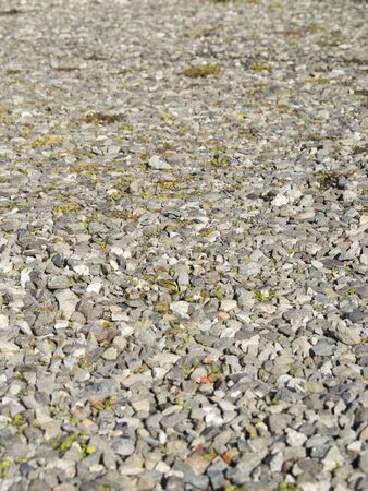 A close up on a gravel background texture with a shallow depth of field.