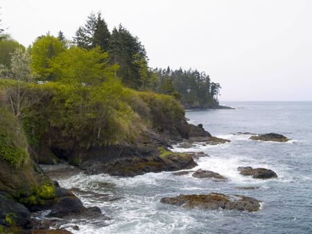 northwest: A beautiful rocky beach at Salt Creek Recreation Area in the Pacific Northwest.