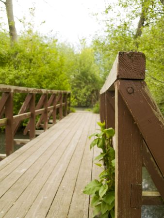 A wood bridge in a park in the Pacific Northwest. Shallow depth of field. photo
