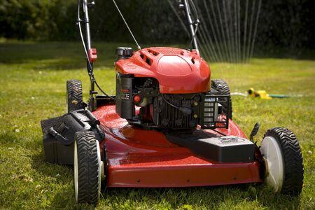 cut grass: A red lawn mower in fresh cut grass.