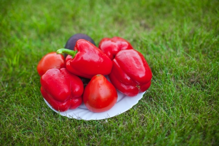 White plate with red peppers on a green grass photo