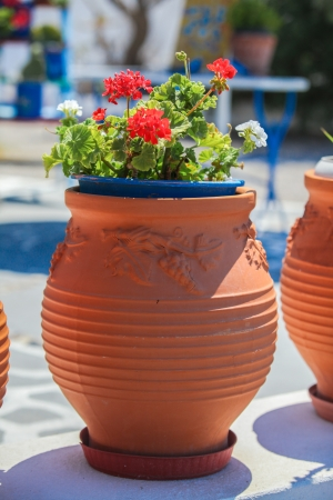 traditional greek red flowerpot with flowers ,Santorini island,Greece photo
