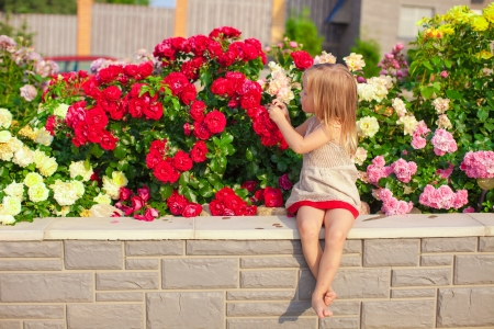 baby girl playing: Little adorable girl sitting near colorful flowers in the garden
