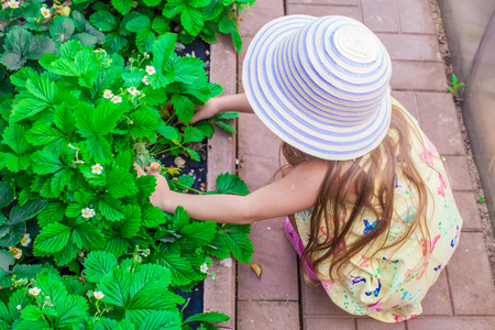 Portrait of cute little girl in hat sitting in the garden photo