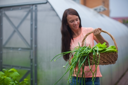 Young woman holding a basket of greenery and onion in the greenhouse photo