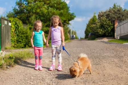 Two Little girls walking with small dog on a leash outdoor photo