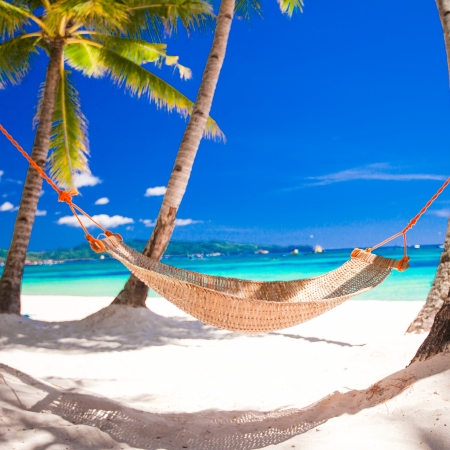 Straw hammock in the shadow of palm on tropical beach by sea photo