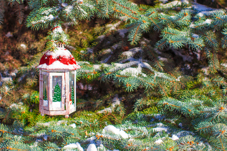 Beautiful fairytale lantern hanging on snowy fir branch in forest photo