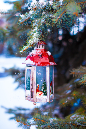 Beautiful red fairytale lantern hanging on fir branch in forest photo