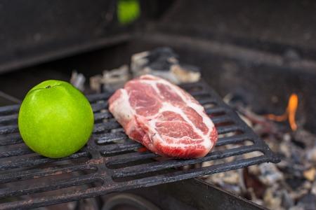 carnivore: Vegetarian or carnivore Stock Photo