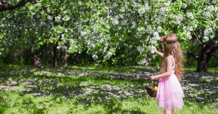 Little adorable girls with butterfly wings under blossoming apple tree photo