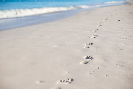 Human footprints on the white sand of Caribbean island photo