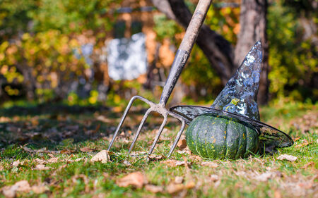 cucurbit: View of Halloween Pumpkins, witchs hat and rake outdoors