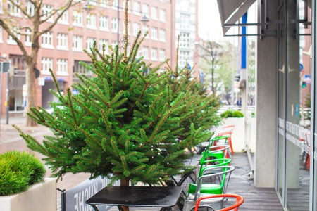 Outdoor cafe in european city at Christmas time photo